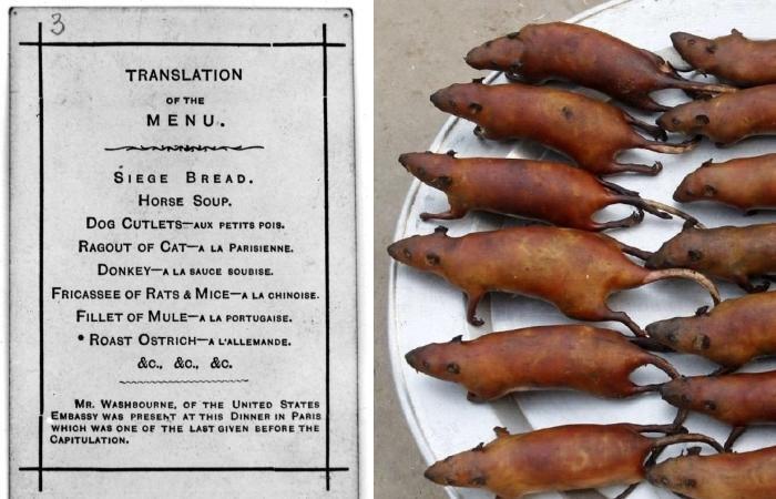 Ужасное меню ресторанов Парижа в 1870 году.